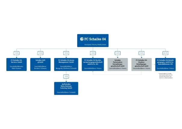 FC Schalke 04 – Konzernstruktur 2013