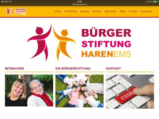Ein Beispiel die Bürgerstiftung der Stadt Haren im Emsland